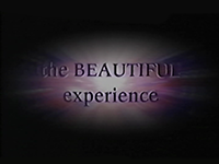The Beautiful Experience title screen